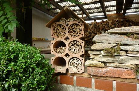 Bienen, Hummeln - © Peter Ablasser